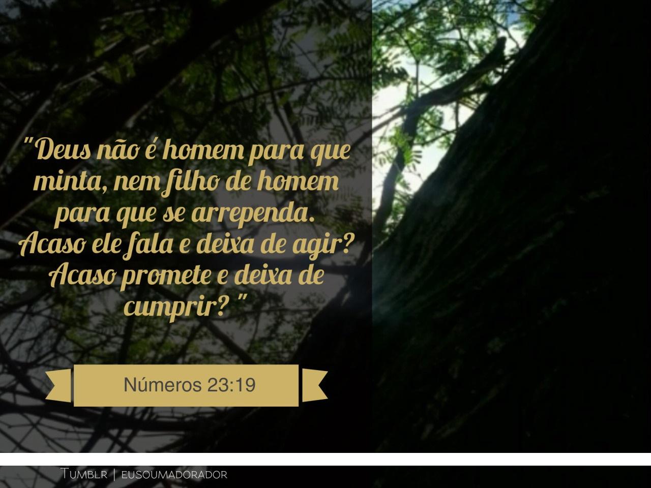 Mensagem De Encorajamento De Deus: Aproveitandoasoportunidades: DEUS ZELA PELA SUA PALAVRA