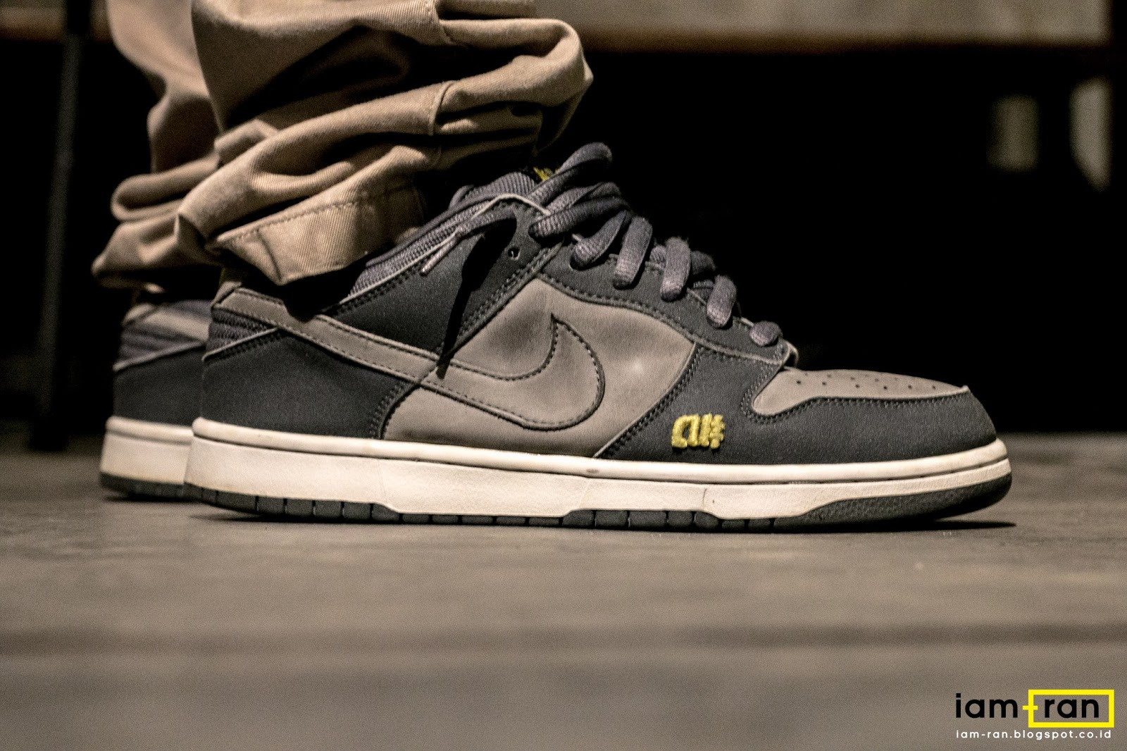 low priced cc866 4396c coupon code on feet in.dhika nike sb dunk low pro x alphanumeric 9e103 3ec8b