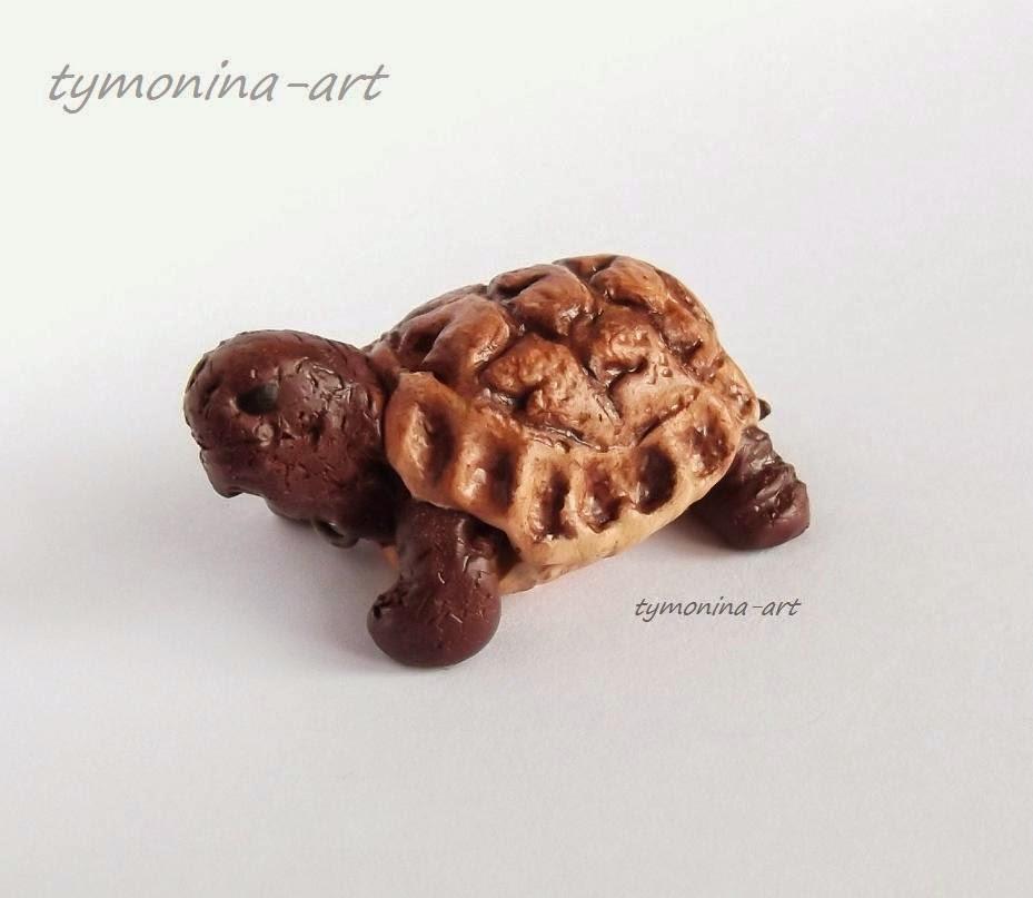 Żółw Teodor