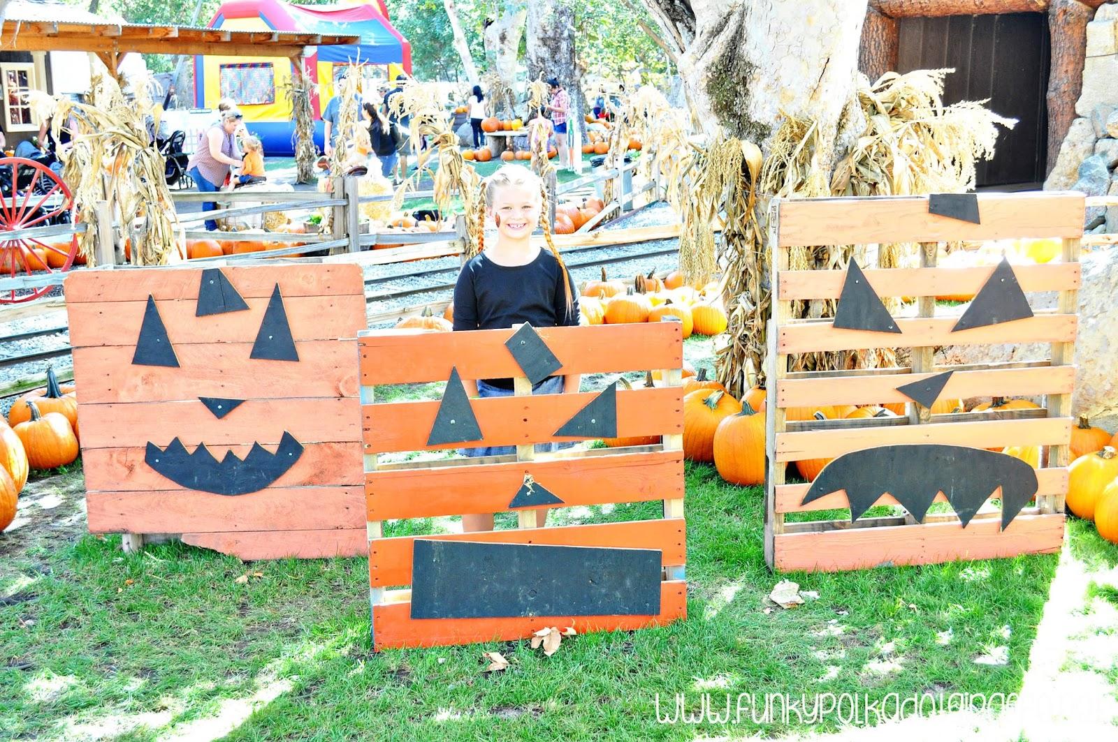 pumpkin patch activity ideas