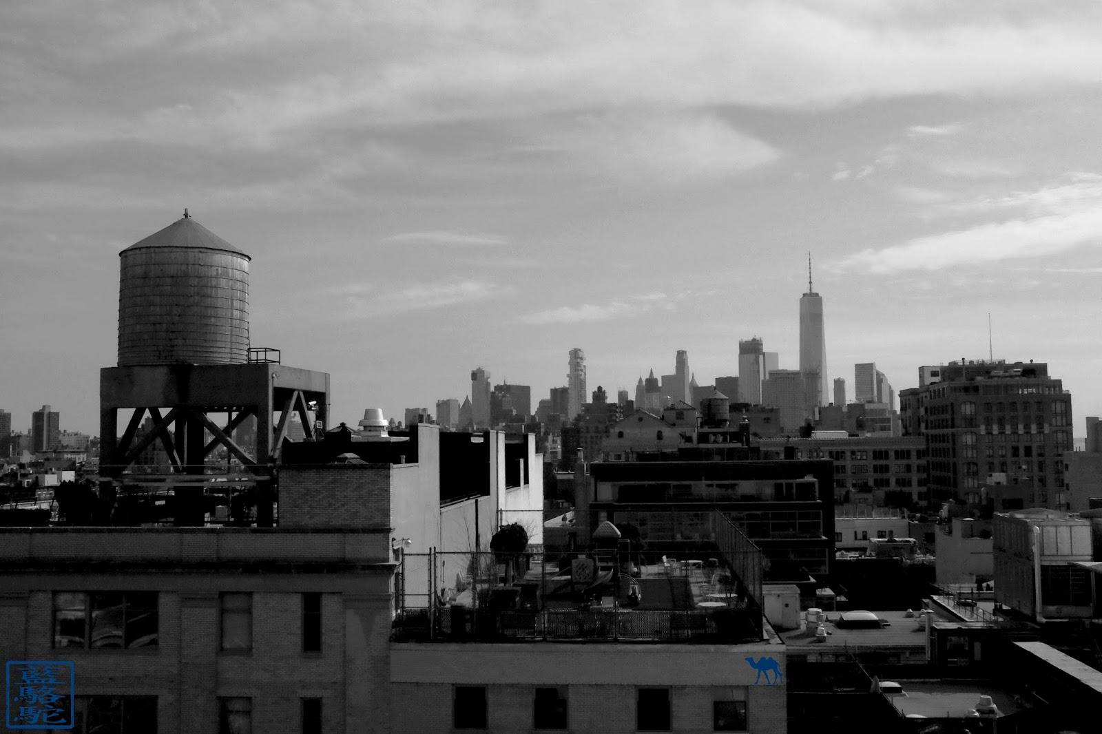 Le Chameau Bleu - New York - Musée Whitney et ses terrasses