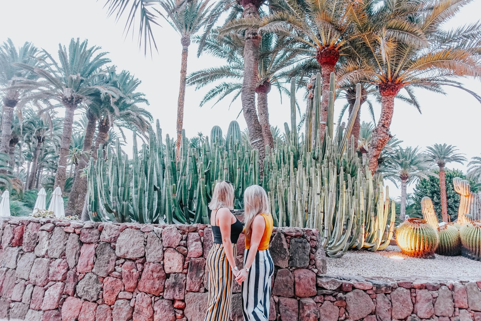 married lesbian couple having a photo by the palm trees and cacti