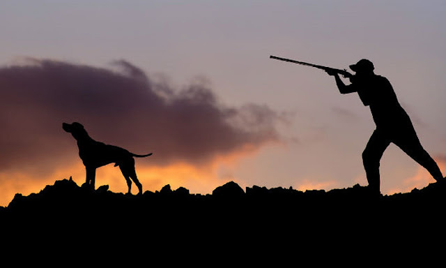 Ο Κυνηγετικός Σύλλογος Λυγουριού για την έκδοση και ανανέωση κυνηγετικών αδειών