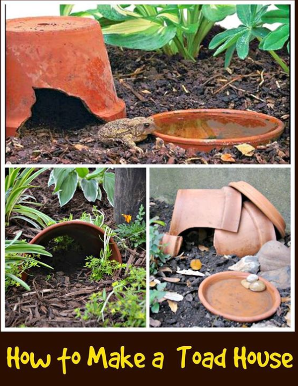 Diy home sweet home 8 ways to attract toads to your garden Make your own toad house