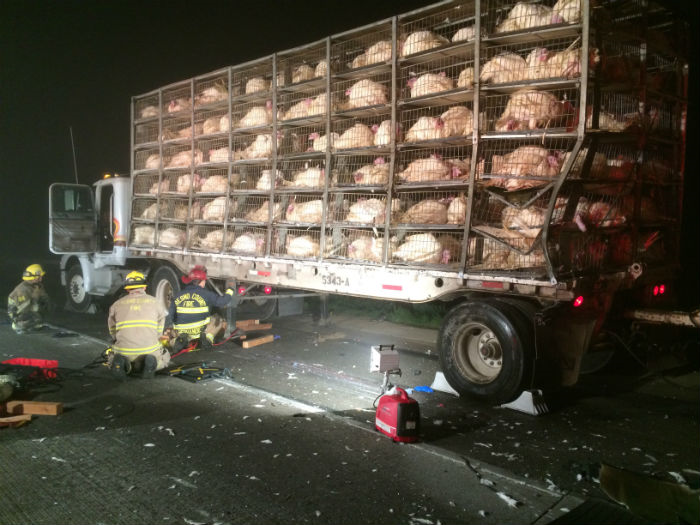 fresno county highway 41 foster farms poultry big rig truck crash fatality