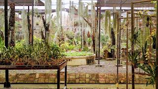 Puentespina Garden
