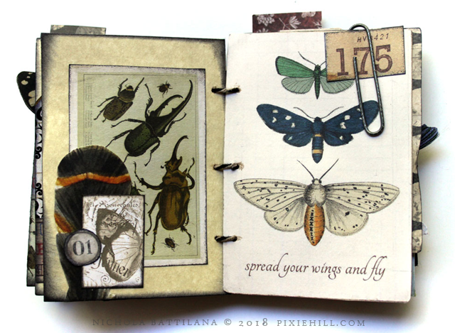 Little Big Fat Nature Journal - Nichola Battilana for AlphaStamps