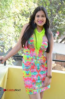 Telugu Actress Prasanna Stills in Short Dress at Inkenti Nuvve Cheppu Press Meet Stills  0055.JPG