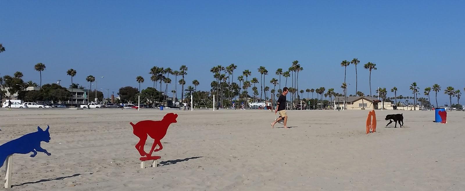 rosies dog beach