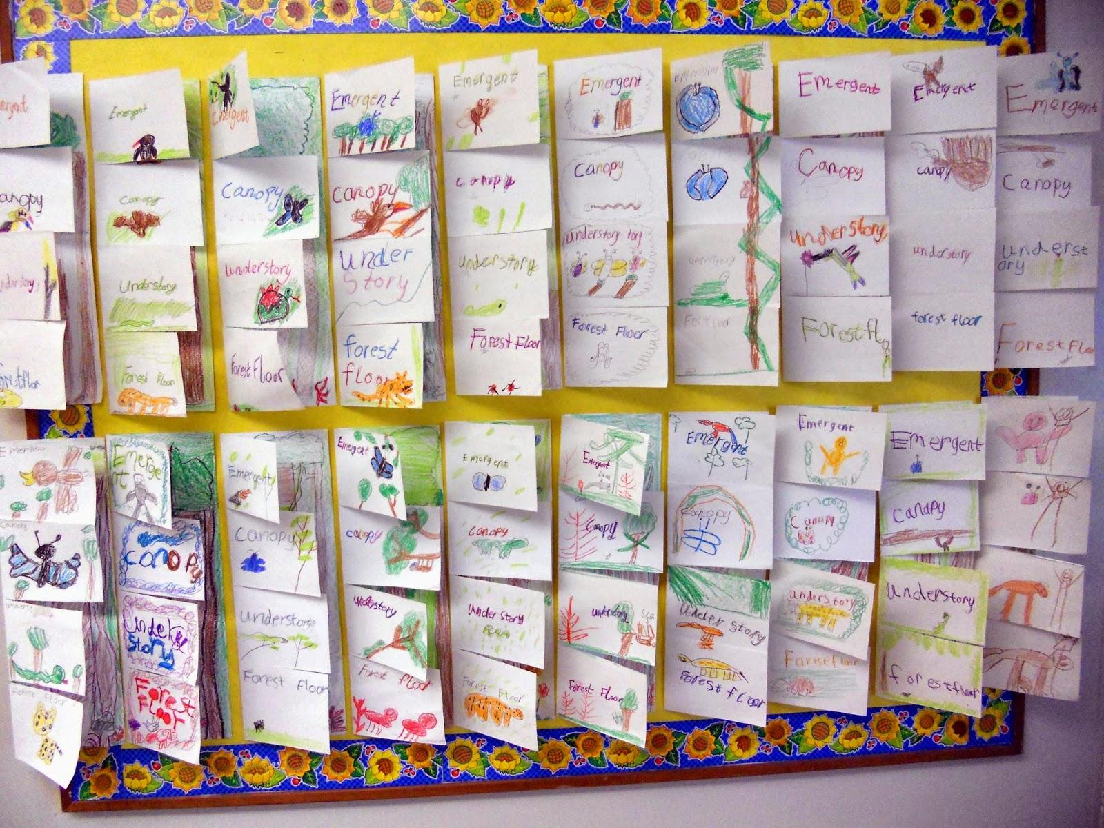 Jnelson S First Grade Blog