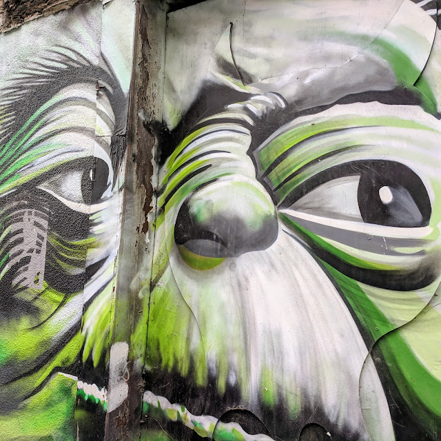 One Day in Dublin: Yoda Street Art in The Liberties Neighborhood