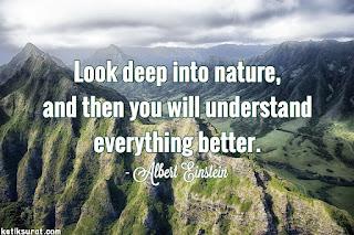 quotes bahasa inggris about nature dan artinya