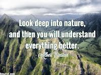 29 Quotes Bahasa Inggris About Nature dan Artinya