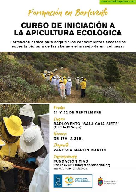 El Cabildo y la Fundación CIAB realizarán una nueva edición del curso de Iniciación a la Apicultura Ecológica en La Palma