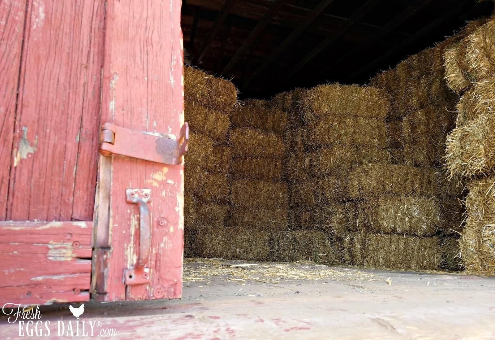 Sawdust Respiratory Problems