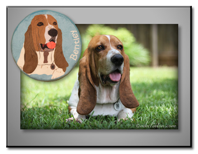 Bentley Basset Hound and his look alike PrideBites disc.