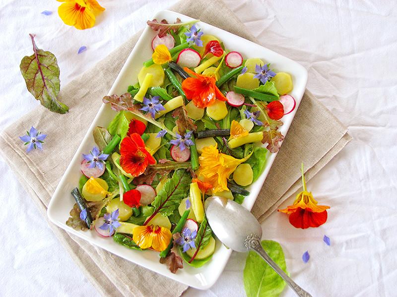 Salade du jardin aux fleurs de bourrache et de capucine recettes bio green lifestyle - Pomme de terre germee comestible ...