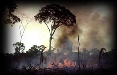 Resultado de imagem para fotos de destruição do planeta