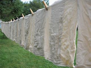 Testimoni: Daur ulang diapers untuk mengurangi limbah di bumi