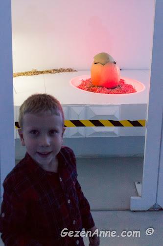 Jurassic Land'teki laboratuvarlarda dinozor yumurtasının yanında oğlum