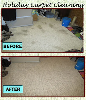 best carpet cleaner machine for pet stains