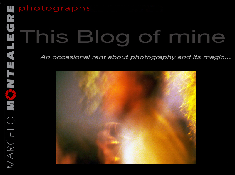 This Blog of mine