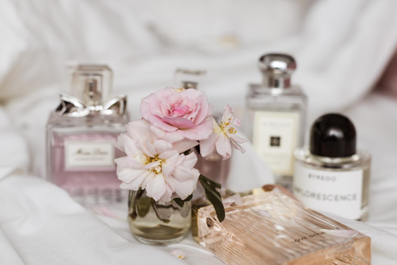 Perfumes Chloé Miss Dior Byredo Jo Malone