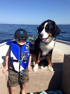 Best rescue dog, Charlie with grandson