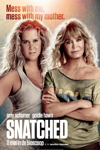 Snatched [2017] [DVDR] [NTSC] [CUSTOM BD] [Latino]