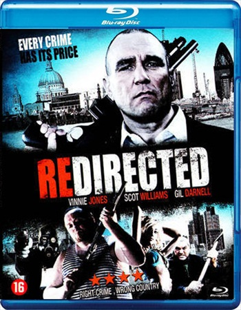Redirected 2014 Dual Audio Hindi Bluray Download