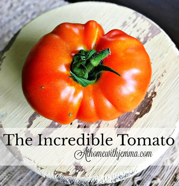 tomato-growing-picking-tips-athomewithjemma