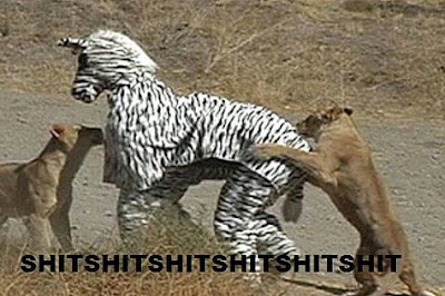 Lustige Bilder über Tiere zum lachen