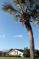 Iglesia en Palm Coast