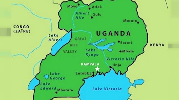 Uganda: 3-year-old girl loses 'genital' in UK