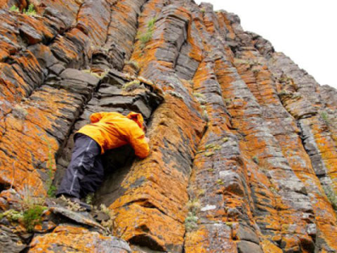 Scientists find evidence that Siberian volcanic eruptions caused extinction 250 million years ago