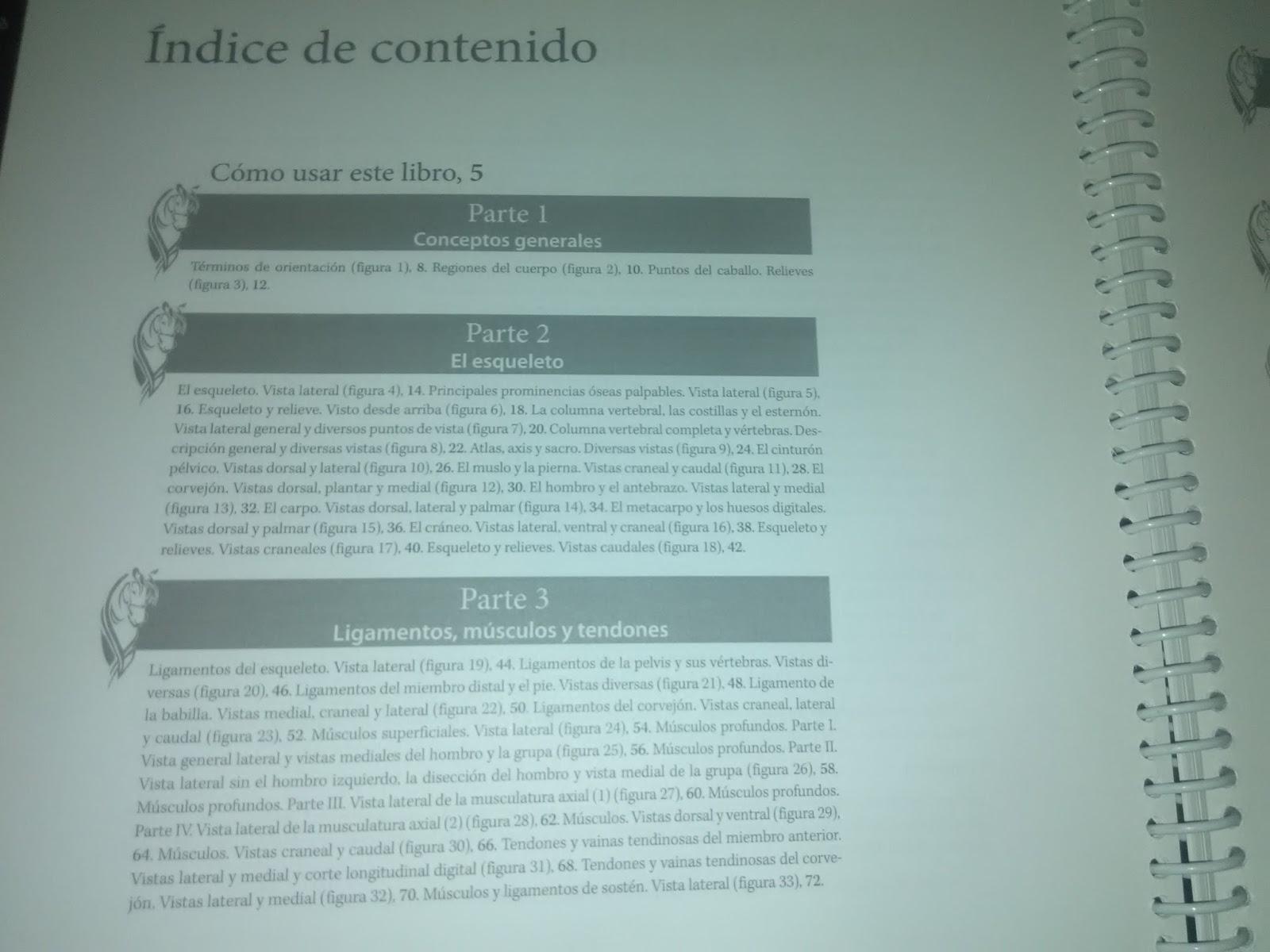 ANATOMIA DEL CABALLO LIBRO PARA COLOREAR MATERIAL VETERINARIO COSTA RICA