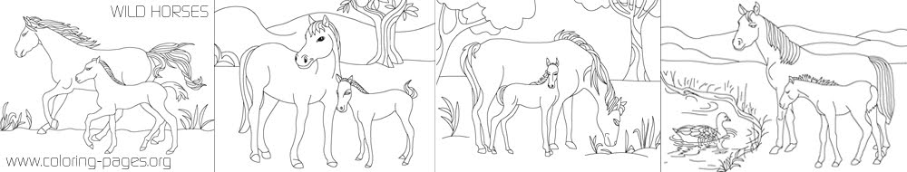 coloring pages wild horses - photo#43