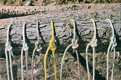 kegunaan-tali-nilon-PE