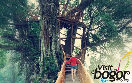 Wisata Hits di Bogor : Rumah Pohon