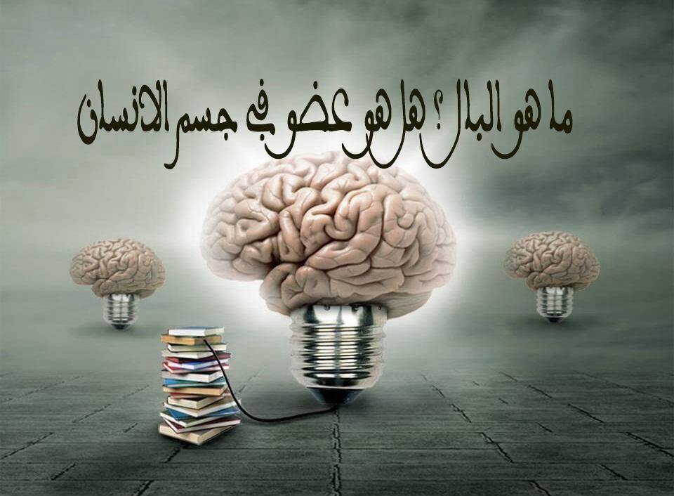 كتاب راحة العقل