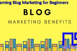 Learning Blog Marketing for Beginners