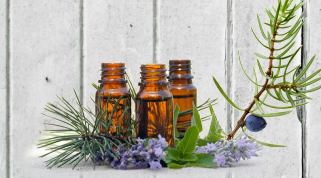 Essential Oils for Stress Management and More, January 25, 2017