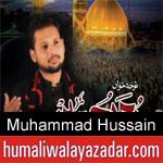 https://www.humaliwalyazadar.com/2018/09/muhammad-hussain-nohay-2019.html