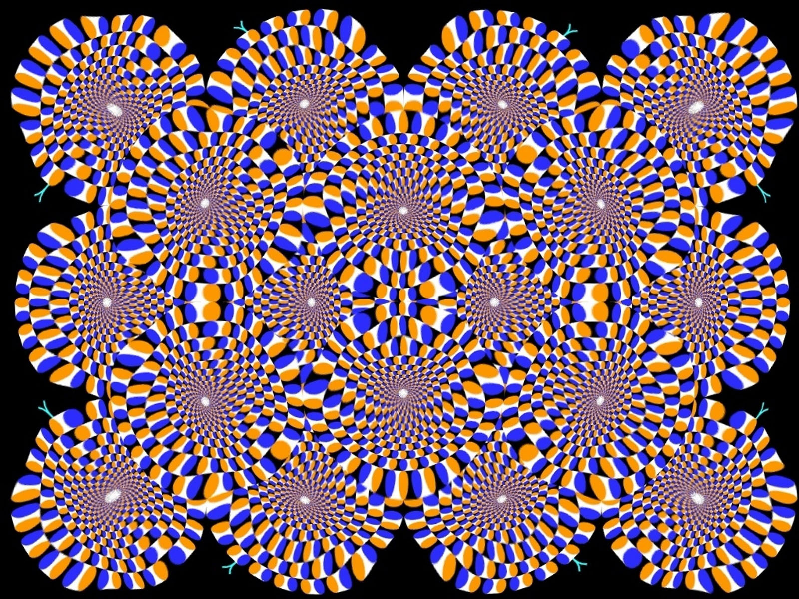 optical illusion wallpapers backgrounds illusions eye trippy tricks trick moving 3d magic visual move crazy tag