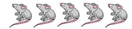 5 cute cartoon rats