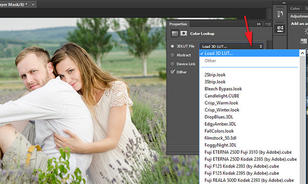 Load exported Color Lookup table in Photoshop CC 2014