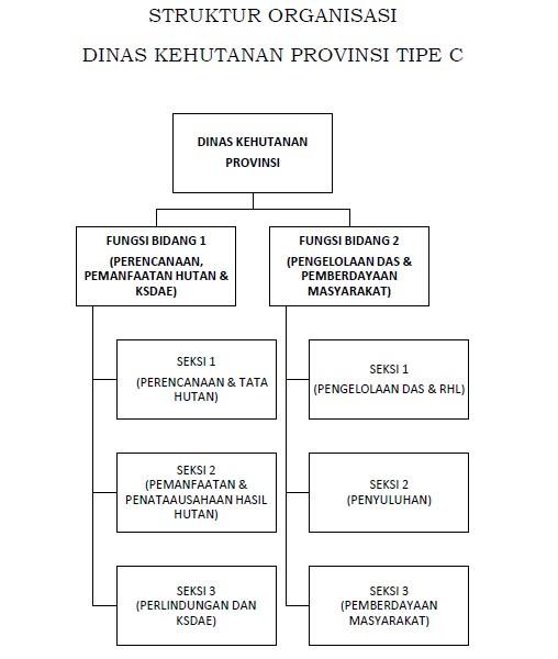 STRUKTUR ORGANISASI DINAS KEHUTANAN PROVINSI TIPE C