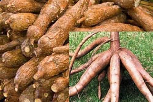 Berat Badan Turun 10 Kg Berkat Makan Rebusan dan Tumisan, Yuk Coba!