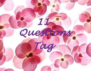 TAG: 11 pytań :)