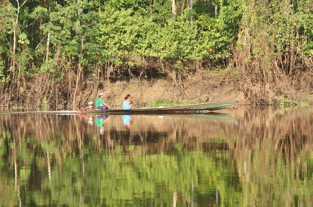 Nativos da Amazônia